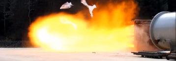Испытания на огнестойкость и взрывоопасность